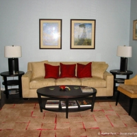 Living room with new pillows and rug