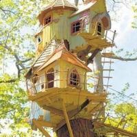 pink-lade-birdhouse