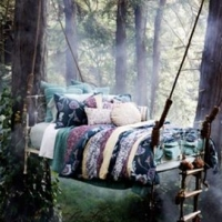 sweet-dreams-in-the-forest