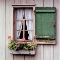 windowbox and shutters