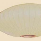 nelson-saucer-lamp