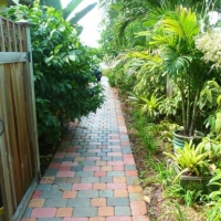 brick-path-through-lush-garden