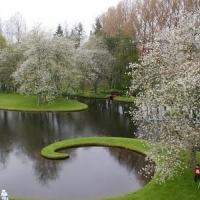 garden-park-in-scotland