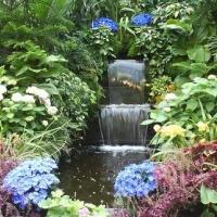 waterfall-among-flowers