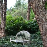 garden-bench