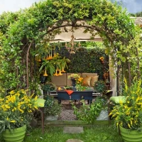 leafy-archway-at-this-old-house