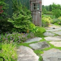 Lovely flagstone-path-to-rustic-building