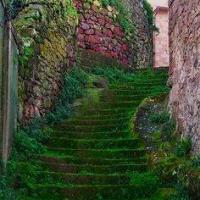 mossy-staircase-sardinia