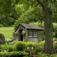 rustic-garden-shed