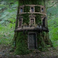 three-story-treehouse