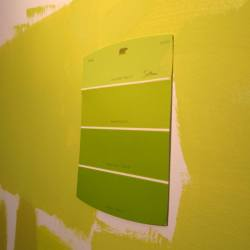 Home Depot Can T Color Match